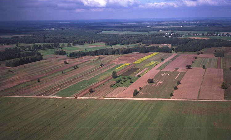 Narrow strips of land